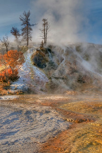 Mamoth hot springs, Yellowstone National park
