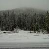 Yellowstone views