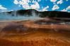 Bison and cloud prints at Grand Prismatic Springs