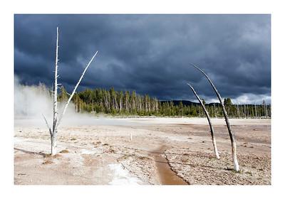 Yellowstone N.P