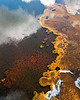 Thermophilic bacteria in Yellowstone