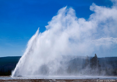 Daisy Geyser, in the Upper Geyser Basin, can shoot more than 75 feet high, and erupts approximately every 3-4 hours.