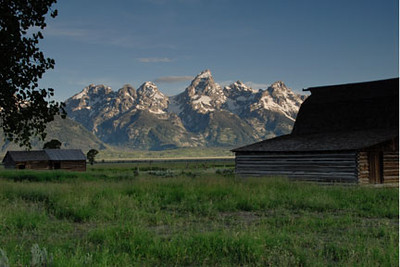 Morman Row was abandoned in 1936.  This barn and he house behind it are not maintained.  The Grand Tetons lie accross Jackson Lake in the distance.  The tallest peak is Moran Mountain.