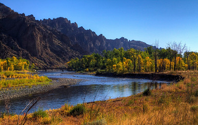 Fall colors along the Shoshone river between Yellowstone and Cody Wyoming.