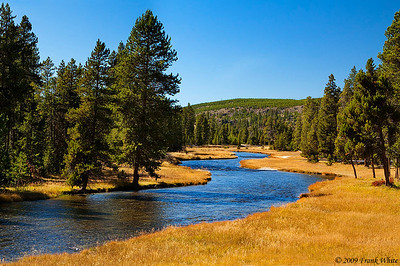 Nez Pierce creek in west Yellowstone