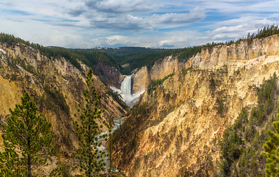 Grand Canyon of the Yellowstone. Lower falls.