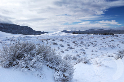 Fresh snow on the Coral Pink Sand Dunes near Kanab, Utah.
