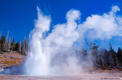 Grand Geyser goes off every 12 hours, +/- 2 hours, and can hit almost 200 feet in height. It was worth the almost 3 hour wait!