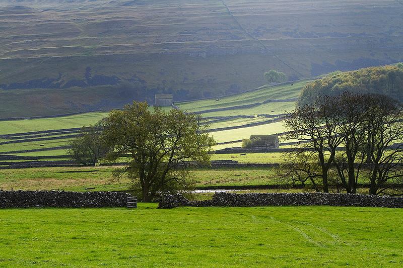 Typical Yorkshire landscape - Litton.