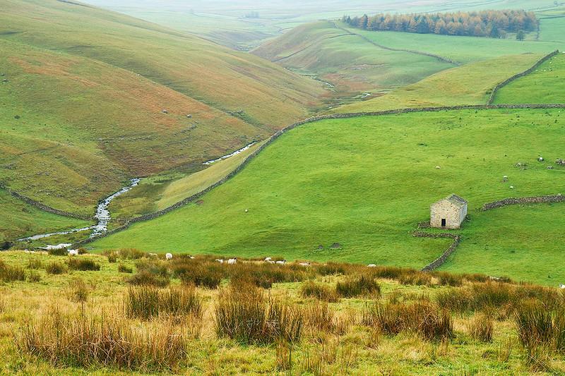 A lone cottage, Yorkshire Dales National Park, UK.