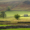 Typical Yorkshire landscape - Litton.