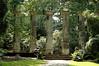 Columns, RHS Harlow Carr