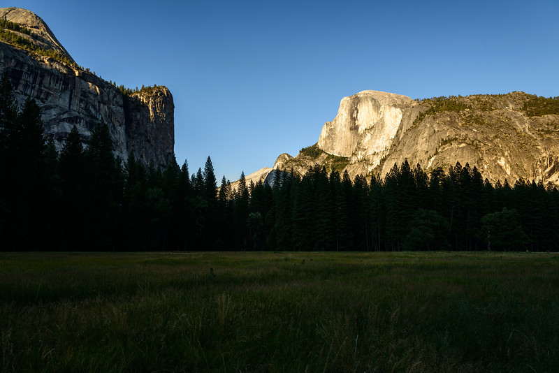 A few images of Half Dome