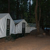 The signature tent cabins