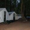 The signature tent cabins