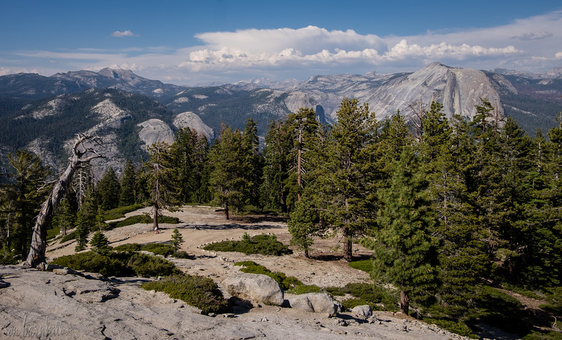 Yosemite_2016