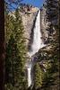 yosemite-yosemite falls-8456