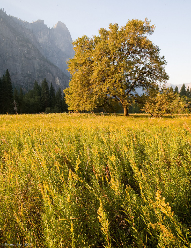 Yosemite_20070825_6613