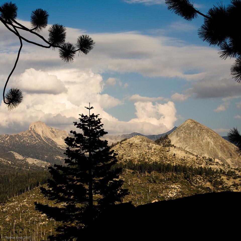 Yosemite_20070826_7261