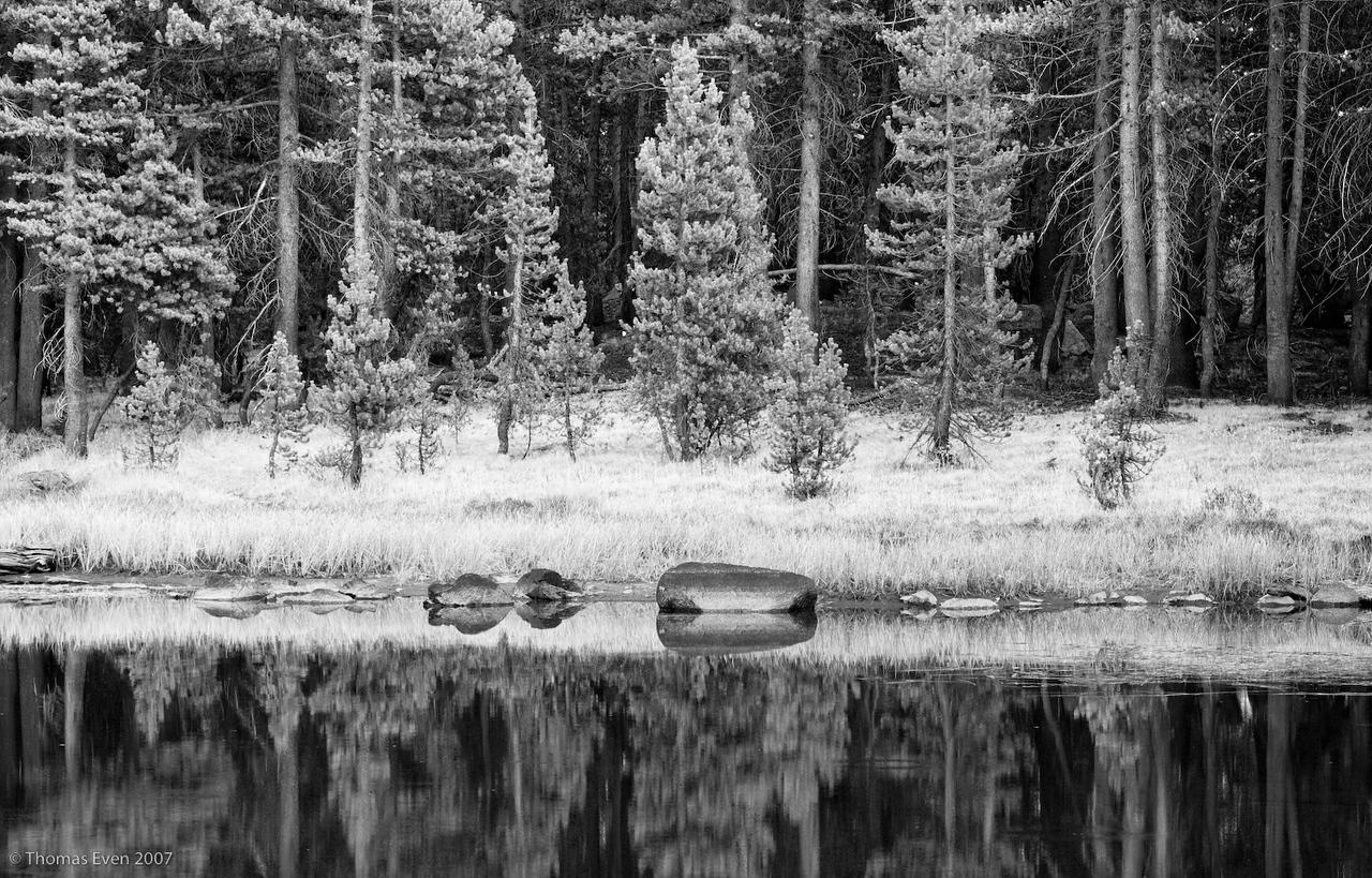 Yosemite_20070825_6846