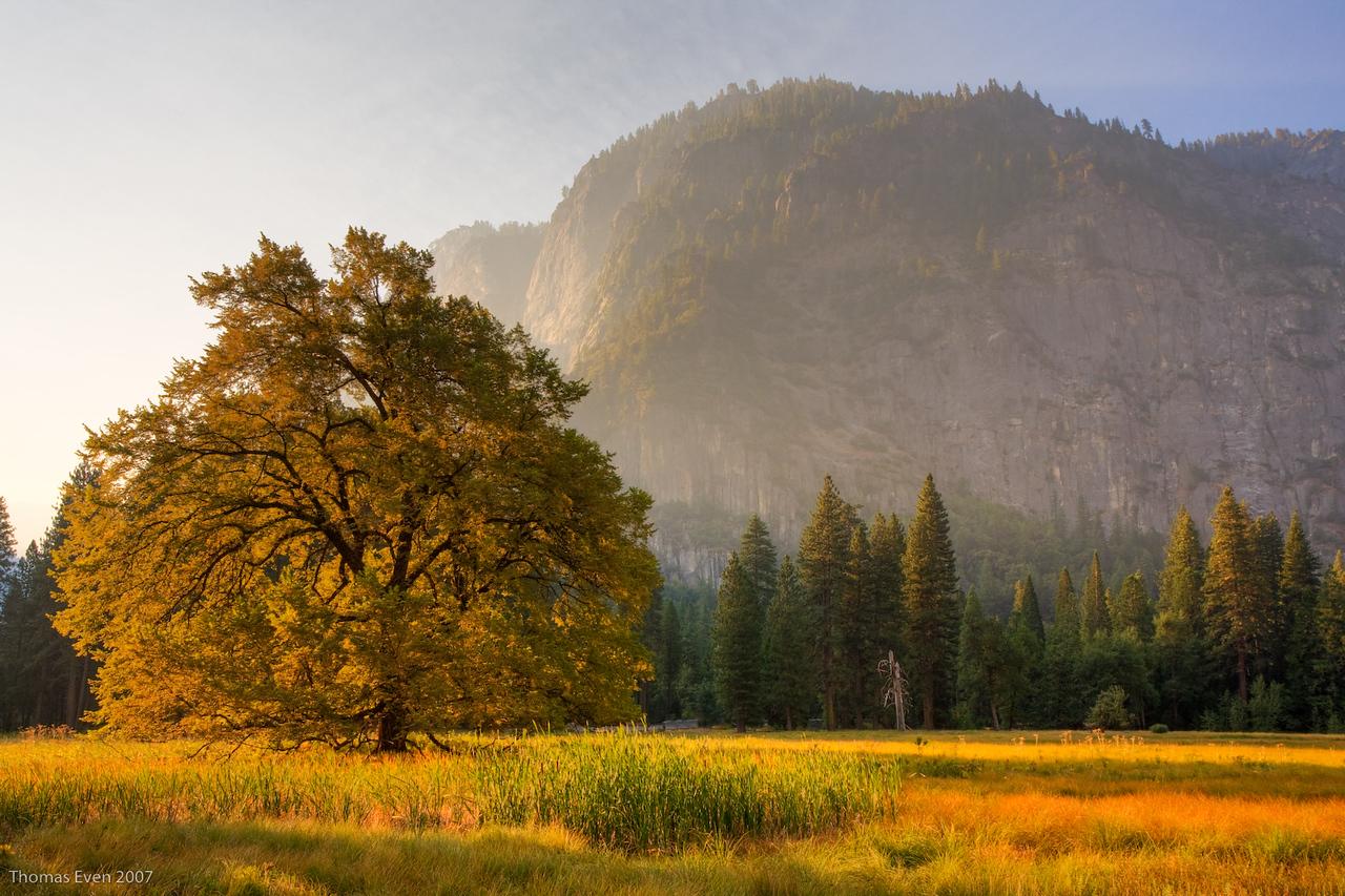 Yosemite_20070825_6623_5_HDR_Master