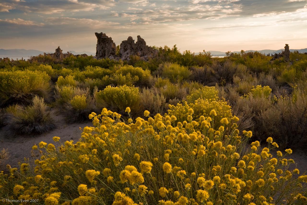 Yosemite_20070826_7009-Edit