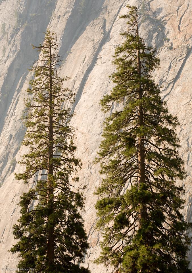 Yosemite_20070825_6658
