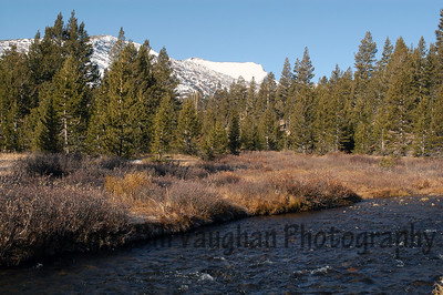 One of the beautiful creeks along Tioga Pass, Yosemite.