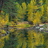 """Merced River in Fall"" Yosemite National Park.  Hopefully a sign of how things should look this fall! This image is from November a few years ago. Just love fall colors and reflections! Feel free to share and let me know if you like it.  Walking along the Merced River in Yosemite National Park in the fall is just an amazing place to be!  Add that to your list of things to do in Yosemite!  Nikon D800, Nikon 70-200mm f/2.8 @ 140mm. ISO 100, f/6.3 and .3 seconds exposure - with a tripod of course!!"