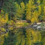 """Merced River in Fall"""