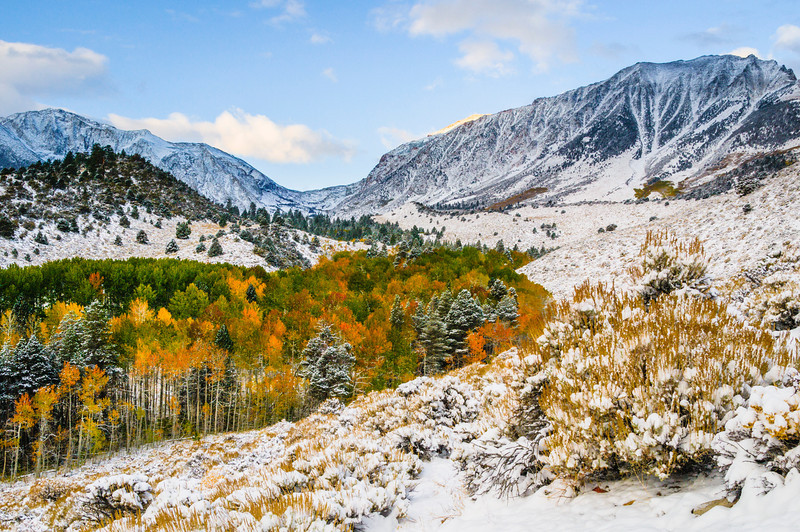 """Snow and Fall Colors in the Eastern Sierra"" I captured this image a few years ago just after a first snowfall with the fall colors. It started out around 90 degrees and quickly changed within a few days to get this crisp snowfall. This is located in Inyo National Forest in the Eastern Sierras outside Lee Vining. This image spoke to me as I saw the curves along the colorful treeline and the layers of hills and mountains in the background. The light dusting of snow offsets the colorful fall colors in the Aspens and pines. Don't forget to eat at the Whoa Nellie Deli for some of the most amazing food after a day of shooting!"