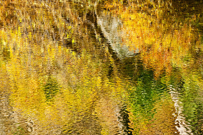 """Fall Colors on the Merced River in Yosemite.  I was shooting with retired Yosemite Park Ranger Mike Osbourne during an Ansel Adams workshop along the Merced river.  We stumbled across these vibrant Fall colors reflecting in the Merced.  Just a pleasing set of greens, yellows and Oranges with a Monet look on the water.   I could have just sat there all day.  9836   My facebook Fan Page is here: <a href=""""http://www.facebook.com/pages/Yosemite-and-Bay-Area-Nature-Photography-by-John-Harrison/190152125697?ref=nf"""">http://www.facebook.com/pages/Yosemite-and-Bay-Area-Nature-Photography-by-John-Harrison/190152125697?ref=nf</a>"""