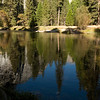 Fall colors at the Merced River in Yosemite Valley