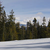 The only snow this February was at Badger pass.  A short snowshoe walk from the lifts rewarded me with this view.