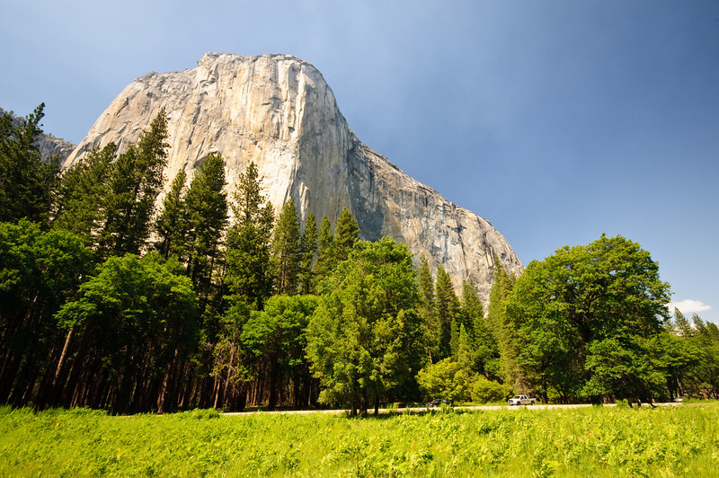 El Capitan in Summer, Yosemite National Park, California.  Climbers can be seen on the big wall here on El Capitan in Yosemite National Park.  Beautiful Meadows and trees during the summer!