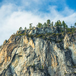 """Trees on the Granite Cliffs""  Yosemite National Park"