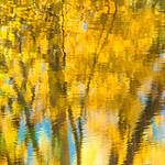 """Tree Reflections in the Merced"" Yosemite National Park. Capturing reflections of all things around is one of my favorite things to do. This gives a painterly almost abstract look about it with the wind, sun and water doing most of the work. This image captures the fall colors of trees along the Merced. I did invert this image which gave a more natural look. This is captured with my Nikon D800, Nikon 70-200mm at 185mm, 1/60 second, f/5 and ISO 500 to get the right amount of flow and detail in the water.<br /> — at Yosemite National Park."