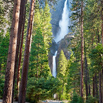 Yosemite Falls in Summer