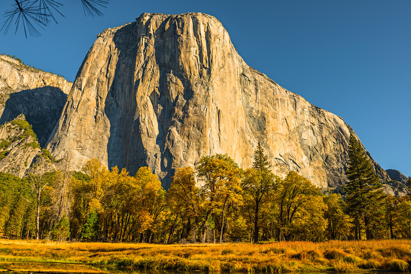 El-Capitain-Fall-Colors-Merced-Yosemite-National-Park_D8X3278