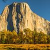 El-Capitain-Fall-Colors-Merced-Yosemite-National-Park_D8X3278