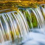 Fern Springs Flowing