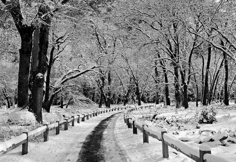 Infinite Loop in Winter.  Yosemite Valley, Winter