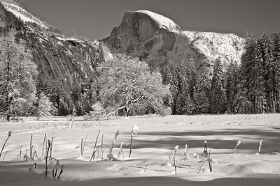 Half Dome wearing white