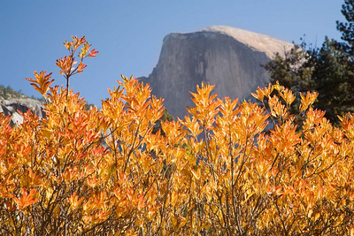 Half Dome in The Fall_No 2