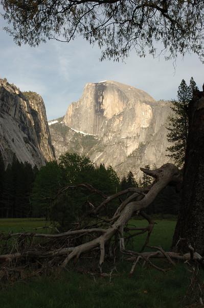 Yosemite-078