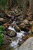 "<h2><i>""Bridalviel Creek""</i></h2>"