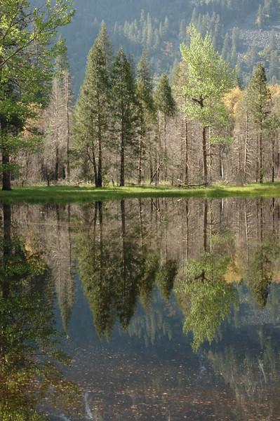 Yosemite-050
