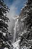 Upper Yosemite Falls Thru the Trees