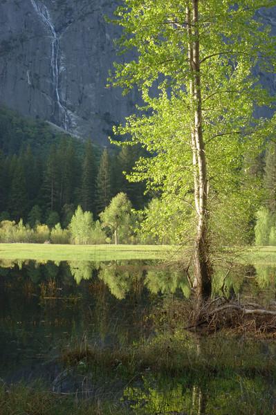 Yosemite-115