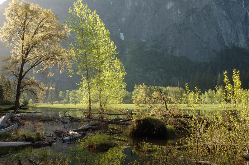 Yosemite-117